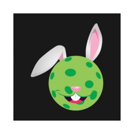 Easter bunny pickleball2